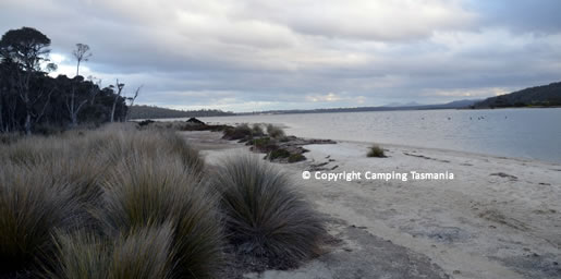 camping moulting bay