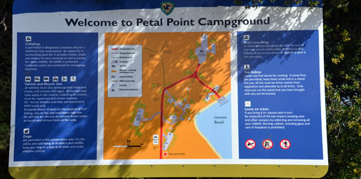 camping petal point