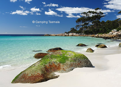 free camping bay of fires stumpys bay number 4